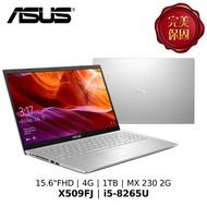 ASUS 華碩 15.6吋窄邊框戰鬥版筆電 X509FJ-0131S8265U/i5-8265U/4G/1TB/W10