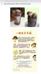 香菇太空包