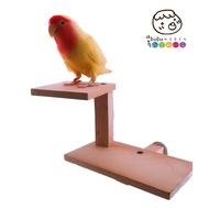 MY PET BIRD 檜木子母站台 W724