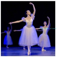 新款芭蕾舞裙成人芭蕾舞蹈紗裙白蓬蓬裙天鵝湖演出表演比賽