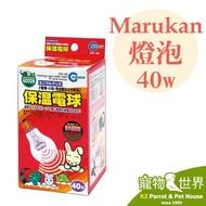 日本Marukan 保溫電球 保溫燈 燈泡 40W 保暖 兔鼠鳥 玻璃保溫燈 不發光更耐用《寵物鳥世界》SY105