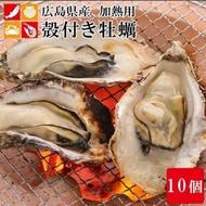 (滿699免運)【海陸管家】活凍日本廣島帶殼牡蠣1包-共10顆(每包約950g)