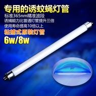 滅蠅燈管粘捕式滅蠅燈專用誘蚊蠅 電擊滅蚊燈管紫外燈管T5-6W和8W