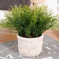 Sea Dianthus Potted Plants Artificial Plants Potted Plants Cement Flower Pots Tree Balls Artificial Green Plants Des