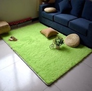 日系 居家 絨毛 地毯 超大地毯 毯子 限量下殺  訂製  200*300
