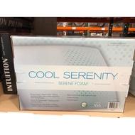 🛍好市多Costco 代購 CARPENTER 涼感布套透氣記憶枕*2入