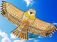 high quality 1.8m golden eagle kite with handle line kite games bird kite weifang chinese kite flyin