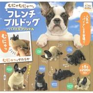 全套6款【日本正版】捏捏慵懶法鬥犬 P2 扭蛋 轉蛋 捏捏樂 法鬥犬 - 206411