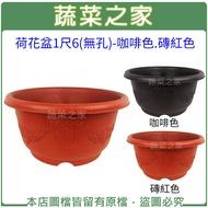 【蔬菜之家005-D126】荷花盆1尺6(無孔)-咖啡色.磚紅色