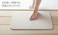 【預購】 日本製造 Soil 日本技100年 匠技術 硅藻土地墊 Light號矽藻土 珪藻土 腳踏墊衛浴室踏墊足乾 日本進口正版 【星野生活王】