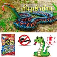 สมุนไพรไล่งู เม็ด ไล่งู สมุนไพร ธรรมชาติ วิธีกำจัดงู ไล่งู สัตว์เลื้อยคลาน กำจัดงู ไล่ สัตว์มีพิษ ไล่หนู