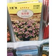 一禪種苗園-花小巧迷你++紫芳草++種子-1組3包