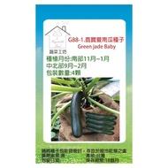 【蔬菜工坊】G88.綠寶夏南瓜種子4顆(綠櫛瓜.節瓜.嫩南瓜.美國南瓜)