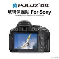 胖牛 玻璃保貼 Sony RX100 RX10 A7M3 A9 廠商直送