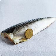 【優鮮配買1送1】厚片超大油質豐厚挪威薄鹽鯖魚10片(210g片 加贈10片共20片)