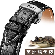 Spot Oriental double lion crocodile leather strap 22MM ORIENT hollow mechanical men and women leather leather strap 20/2