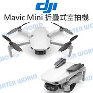 【中壢NOVA-水世界】DJI Mavic Mini 折疊式 迷你空拍機 套裝版 / 單機版 3軸 2.7K增穩 公司貨