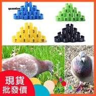 Sun 鸚鵡玩具 清倉處理鴿子足環數字卡環識別扣環塑膠彩環