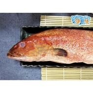 【94海鮮】新鮮嚴選野生★菲律賓紅條魚★ (600-800g/隻)