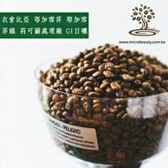 [微美咖啡]超值1磅550元,耶加雪菲鎮 莉可圖處理廠 G1 日曬(衣索比亞)淺焙咖啡豆,500免運,新鮮烘培