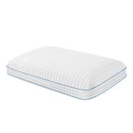 Purelux 支撐記憶枕 45 X 76公分