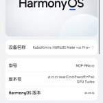 Huawei 華為 Mate 40 pro+