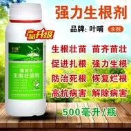 台灣-促銷生根粉快速生根扦插強力生根劑吲哚丁酸多肉果樹富貴竹綠蘿營養液