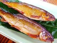 煮四萬十川的香魚(ayu)甘露煮小魚10條高知縣四萬十町生產炭火無煙熏製完成甜sahikaeme焼鮎的四萬十 AgrifarmKOCHI