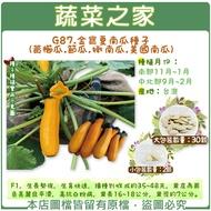 【蔬菜之家】G87.金寶夏南瓜種子(黃櫛瓜.節瓜.嫩南瓜.美國南瓜) 2顆、30顆(共有2種包裝可選)