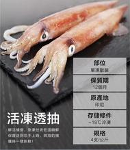新鮮活凍 單凍 透抽中卷 (30CM/250g±5% ) 紅毛港海鮮市集 團購價兩公斤 8隻