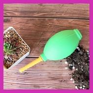 [ เหมาะเป็นของฝากของขวัญได้ Gift ] ที่เป่าลม High Quality Air Blower G Succulents กุหลาบหินนำเข้า ไม้อวบน้ำ [ ผลิตจากวัสดุวัตถุดิบคุณภาพดี ]