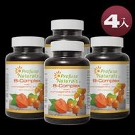 【沛然 Profuse Naturals】沛康南非醉茄+B群綜合膠囊 (60顆/瓶) 4入組