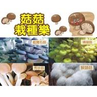 栽種樂 菇菇 DIY 8包(太空包)+8外盒