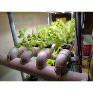 32 holes hydroponic nft system