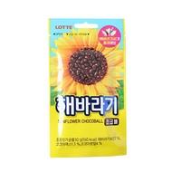 韓國 Lotte 樂天 葵花子巧克力 30g 葵瓜子 巧克力豆