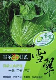雪翠二號高麗菜種子100粒250元