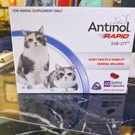 最低價 *(全新現貨)*   酷版Antinol®安適得  貓用    60粒