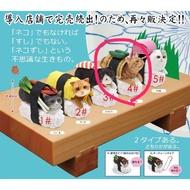 絕版品 貓壽司扭蛋 壽司貓 貓轉蛋 貓咪扭蛋