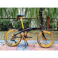 "Crius Velocity 22"" (10 speed Shimano Tiagra Black Gold"