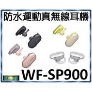 全新 現貨 SONY WF-SP900 運動 游泳 防水 真無線耳機 內建4G WF SP900 藍芽耳機 公司貨