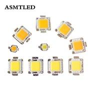9-12V 30-38V LED ชิพหลอดไฟ10W 20W 30W 50W 100W เย็นสีขาวไฟ LED แสงสีขาวอุ่นแสงสำหรับโคมไฟฟลัดไลท์24 * 40mil ชิป LED แรงสูงสำหรับติดตั้งบนแผงวงจร