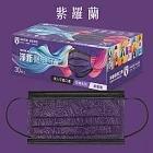 【淨新】台灣製醫用口罩成人30入花博系列 -紫羅蘭