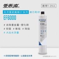 【EVERPURE 愛惠浦】EF series全流量強效碳纖維系列(EF6000活性碳濾芯)