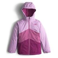 美國百分百【全新真品】The North Face 防風雪衣 連帽外套 TNF 保暖 夾克 北臉 拼色紫色 女青年版 I802