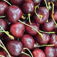 智利櫻桃2.5公斤現限時特價