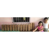 YENYEN GARLIC PEANUTS | 1000ml tub/450grams