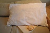 客製另開賣場 檜木枕芯(大)、檜木球x2