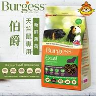 英國 Burgess Excel 英國伯爵 天竺鼠專用 新鮮薄荷添加 2KG