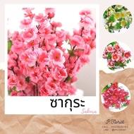 ซากุระ ช่อดอกซากุระ ดอกซากุระ ซากุระปลอม ดอกไม้ประดิษฐ์ ดอกไม้ปลอม ตกแต่งบ้าน พร็อพถ่ายรูป (สินค้าพร้อมส่ง)