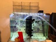 魚缸     海灣缸